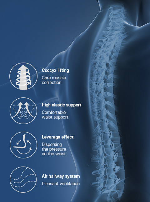 Cocoyx lifting, High elastic support, Leverage effect, Air hallway system