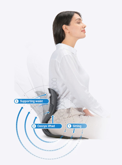 1. Sitting, 2. Coccyx lifted, 3. Supportong waist